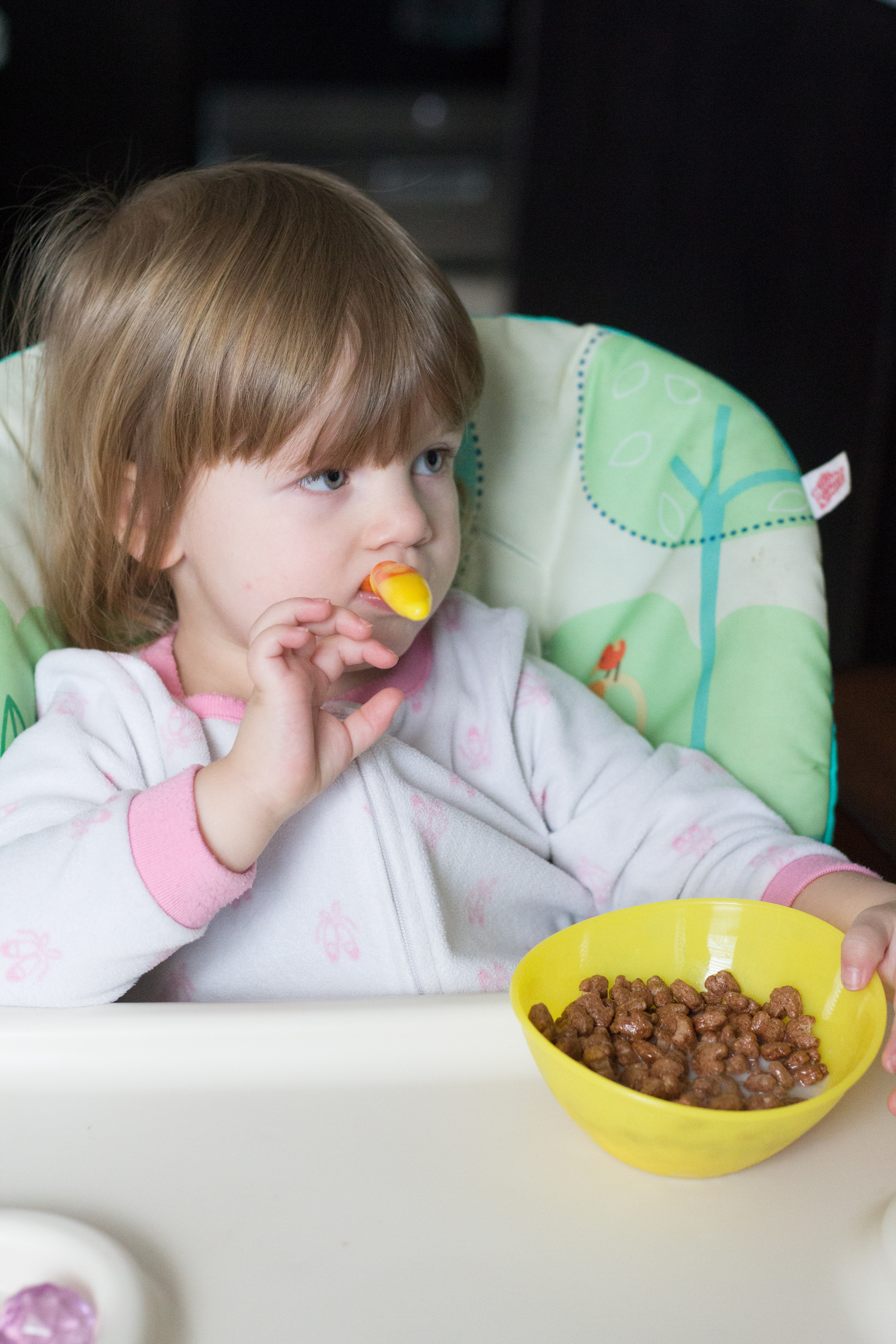 daily toddler routine