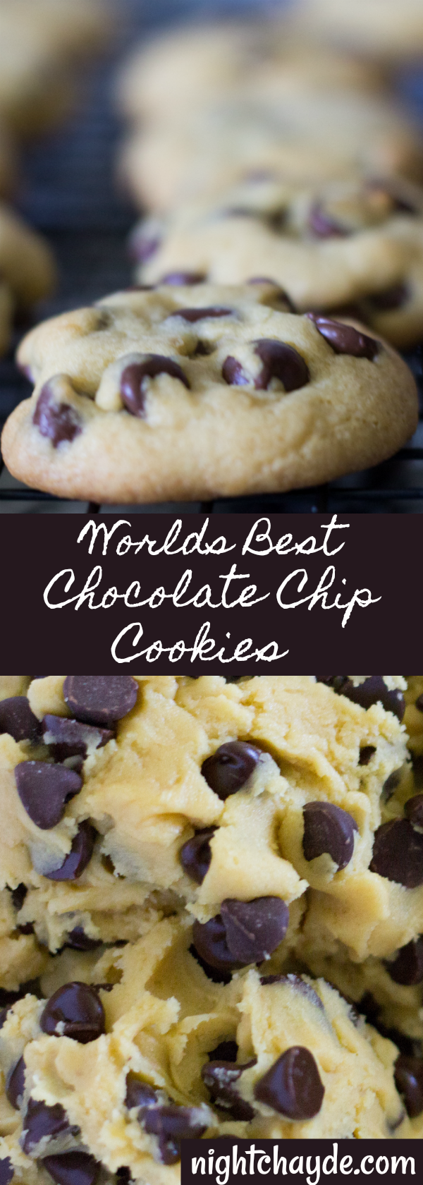 The Worlds Best Chocolate Chip Cookie