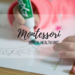 Montessori Preschool Dental Unit