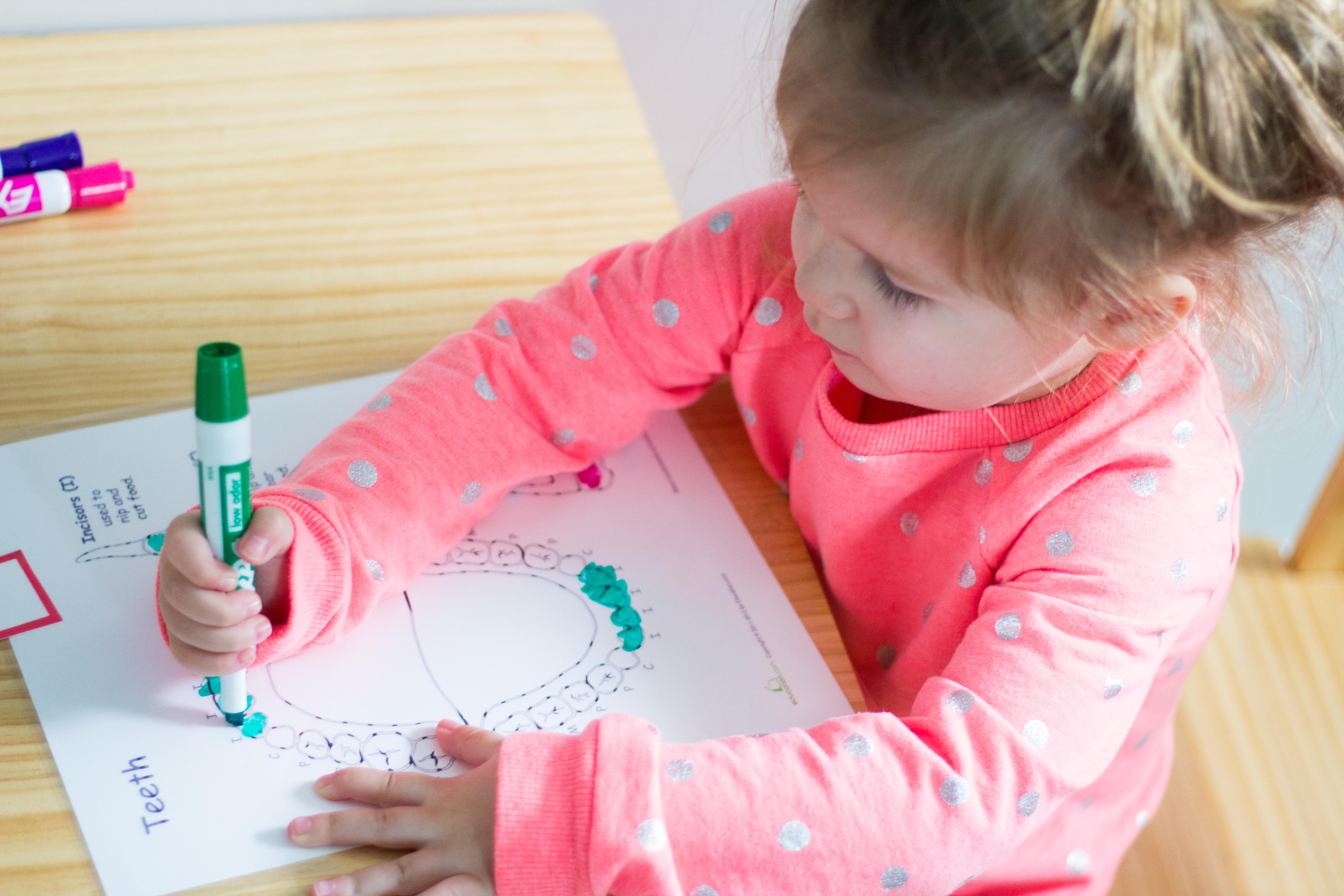 Montessori Preschool At Home- Dental Health Unit