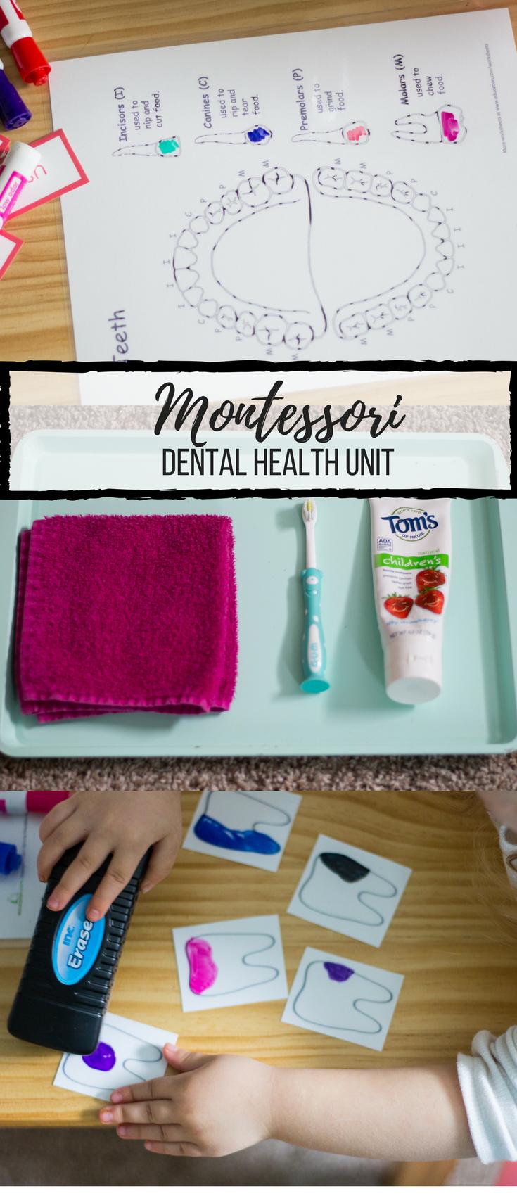 Montessori Preschool Dental Unit