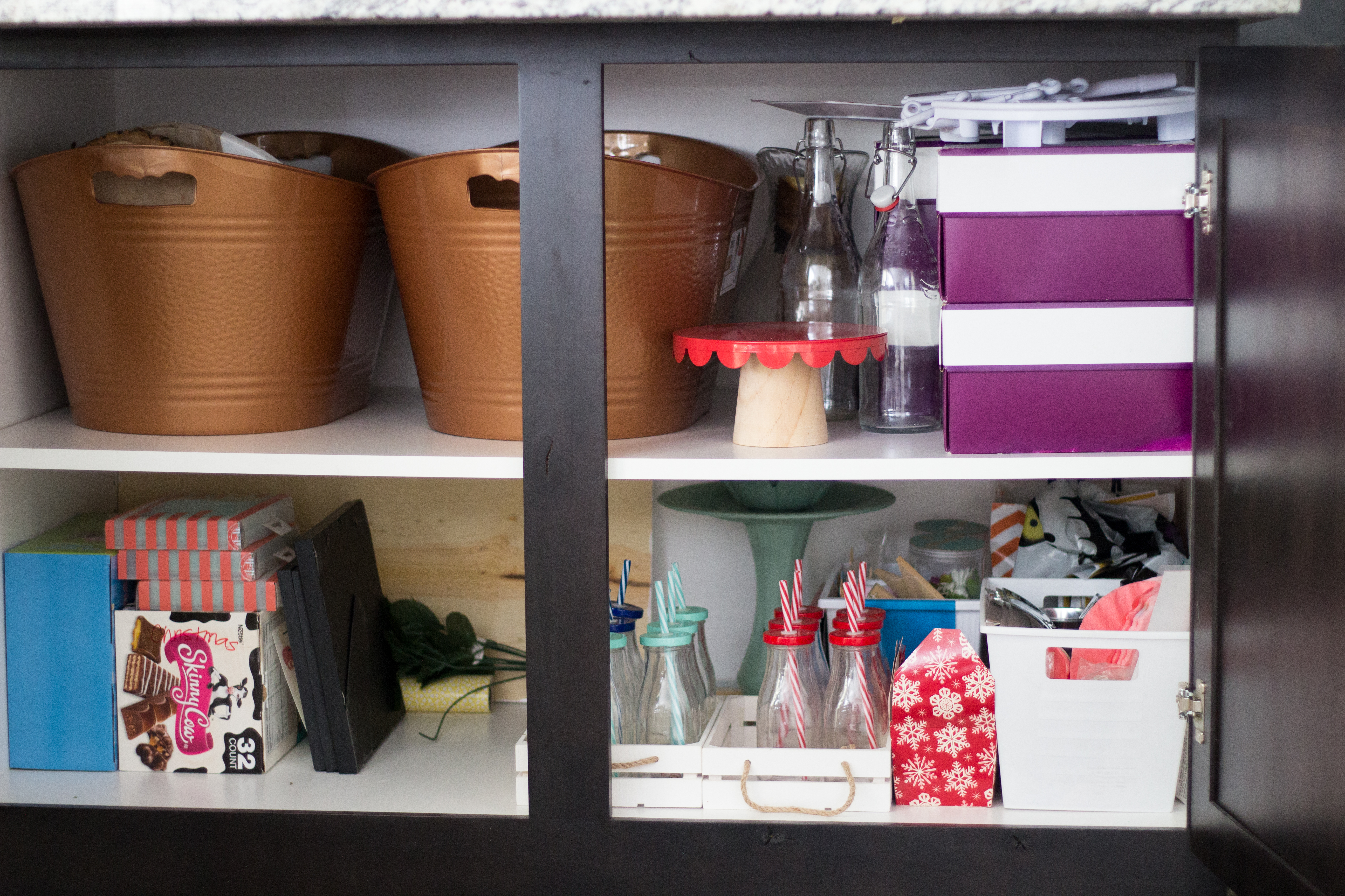 Project Organization: Party Cabinet