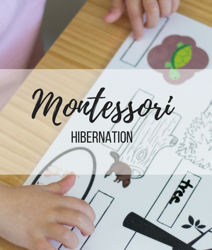 Montessori Week 3: Hibernation