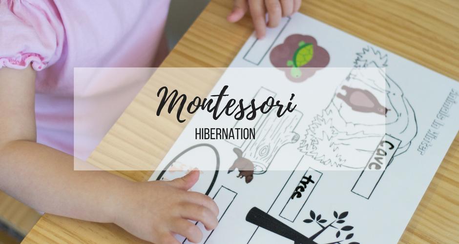 Montessori Week 3: Hibernation