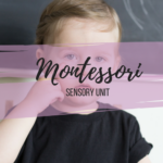 Montessori home school lesson plans and printables