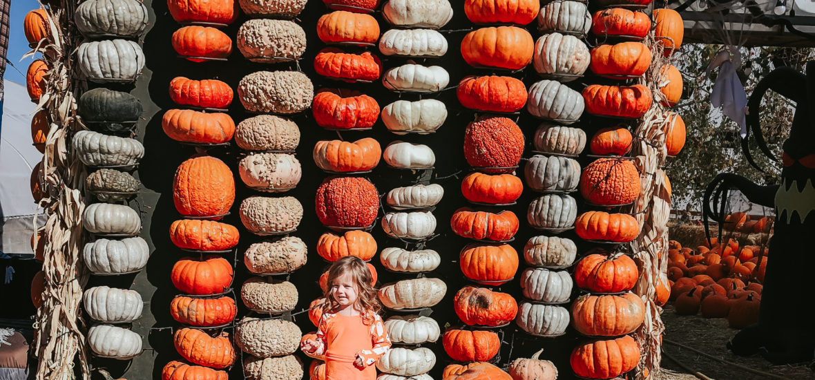 Halloween Clothes for Kids