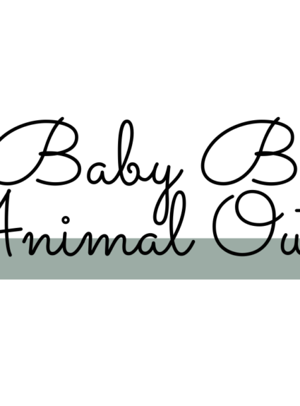 Animal Themed Outfits for Baby Boys